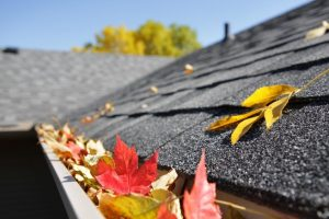 gutter cleaning strongsville